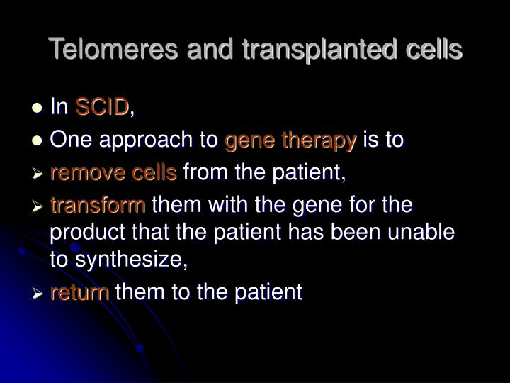 Telomeres and transplanted cells