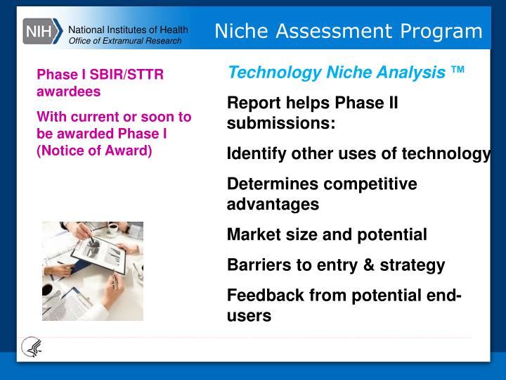 Technology Niche Analysis