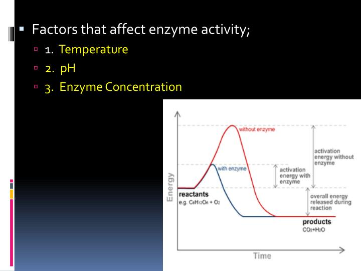 Factors that affect enzyme activity;