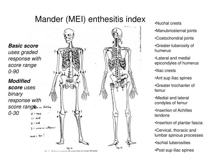 Mander (MEI) enthesitis index