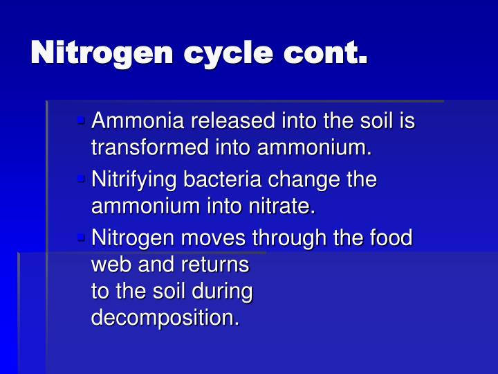 Nitrogen cycle cont.