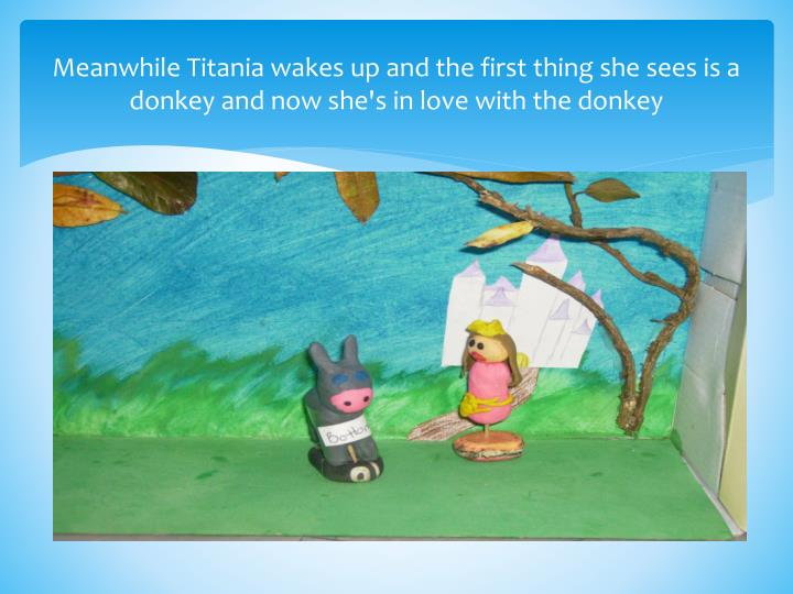 Meanwhile Titania wakes up and the first thing she sees is a donkey and now she's in love with the donkey