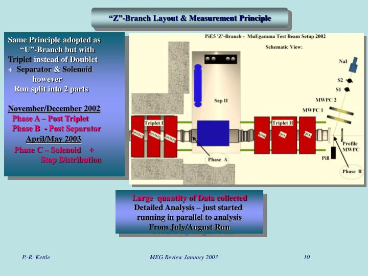 """Z""-Branch Layout & Measurement Principle"