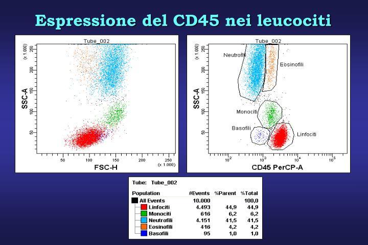 Espressione del CD45 nei leucociti
