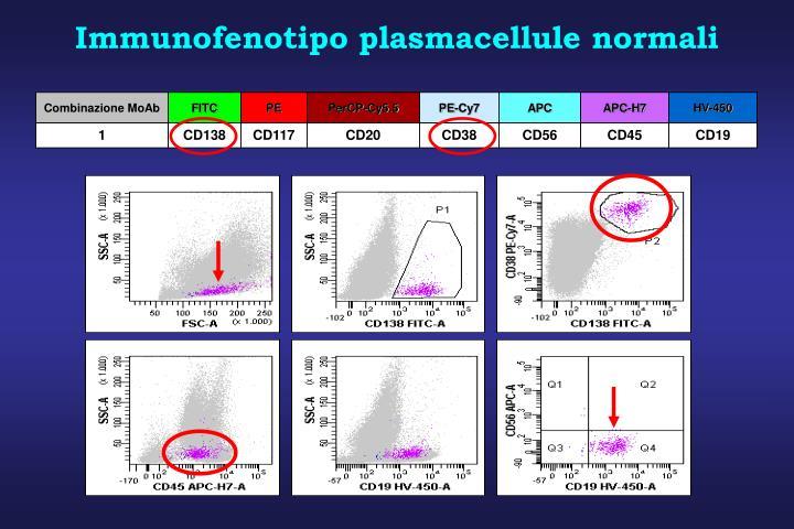 Immunofenotipo plasmacellule normali
