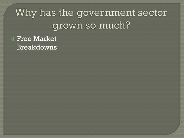Why has the government sector grown so much?
