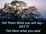 tell them what you will say say it tell them what you said