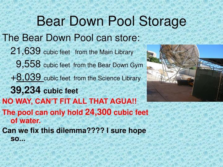 Bear Down Pool Storage