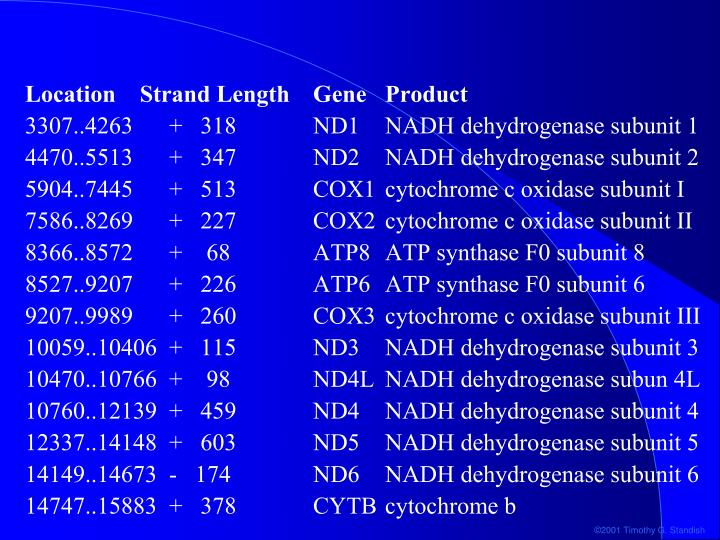 Location    Strand Length	Gene	Product