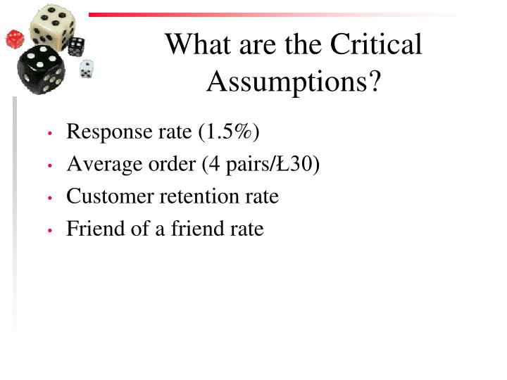 What are the Critical Assumptions?