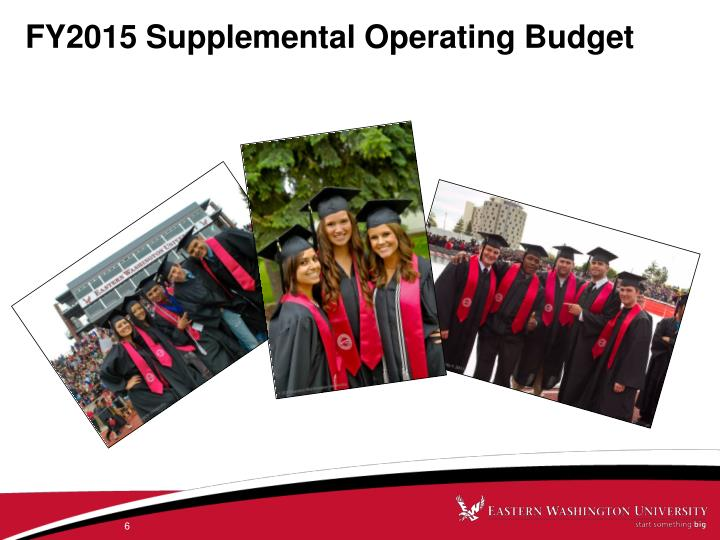 FY2015 Supplemental