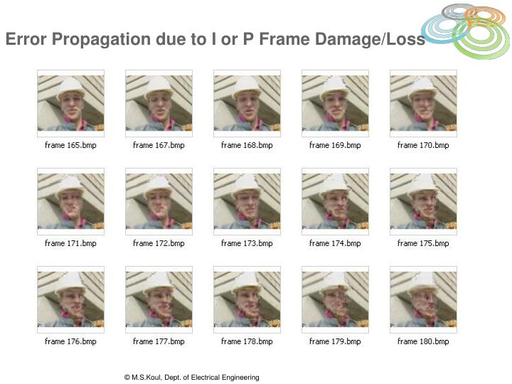Error Propagation due to I or P Frame Damage/Loss