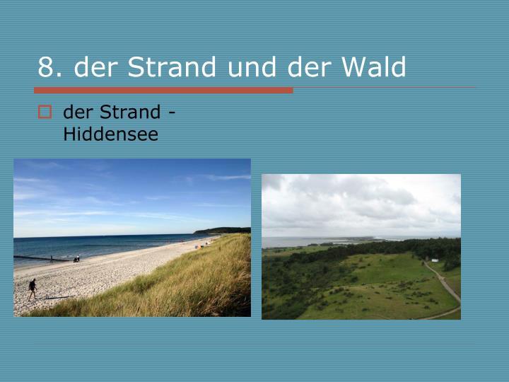 8. der Strand und der Wald