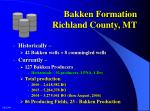 bakken formation richland county mt