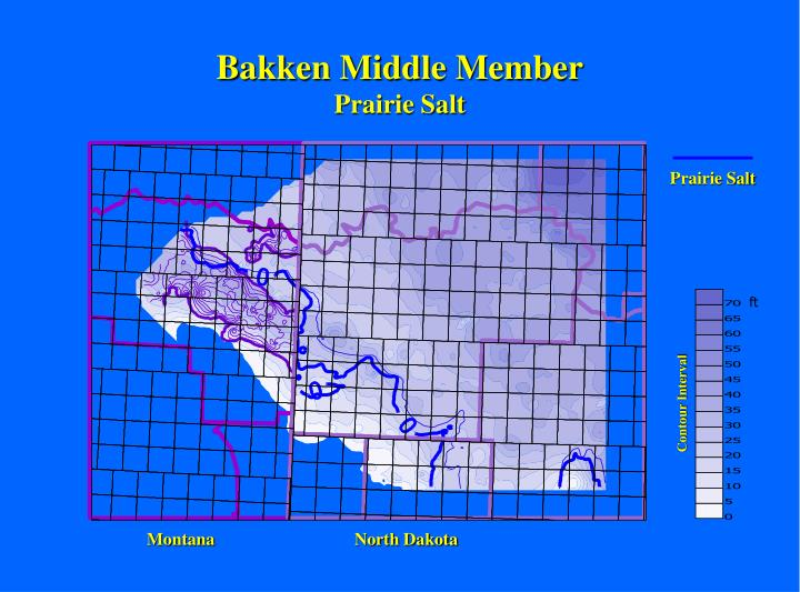 Bakken Middle Member