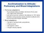 acclimatization to altitude pulmonary and blood adaptations