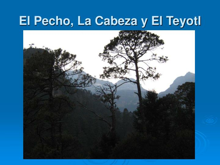 El Pecho, La Cabeza y El Teyotl