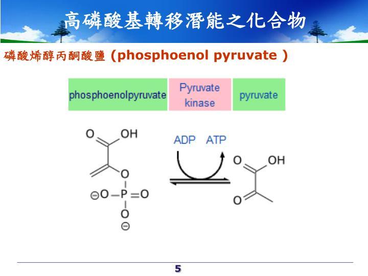 高磷酸基轉移潛能之化合物
