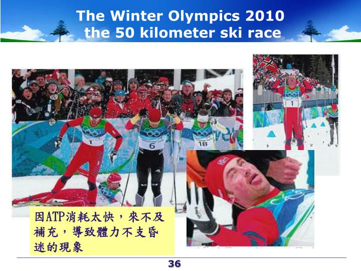 The Winter Olympics 2010