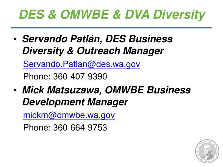 DES & OMWBE & DVA Diversity