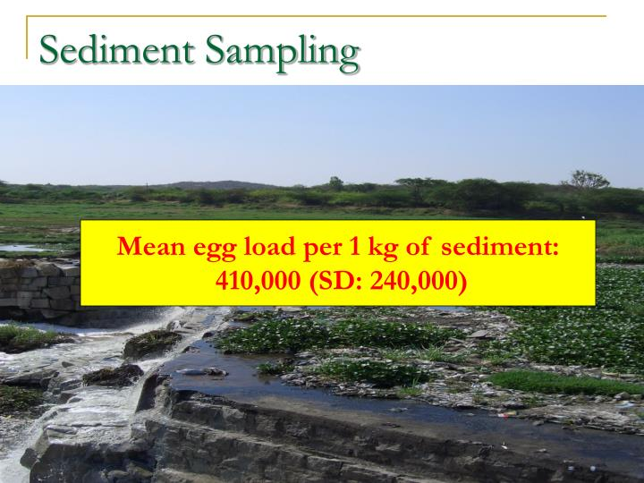 Sediment Sampling