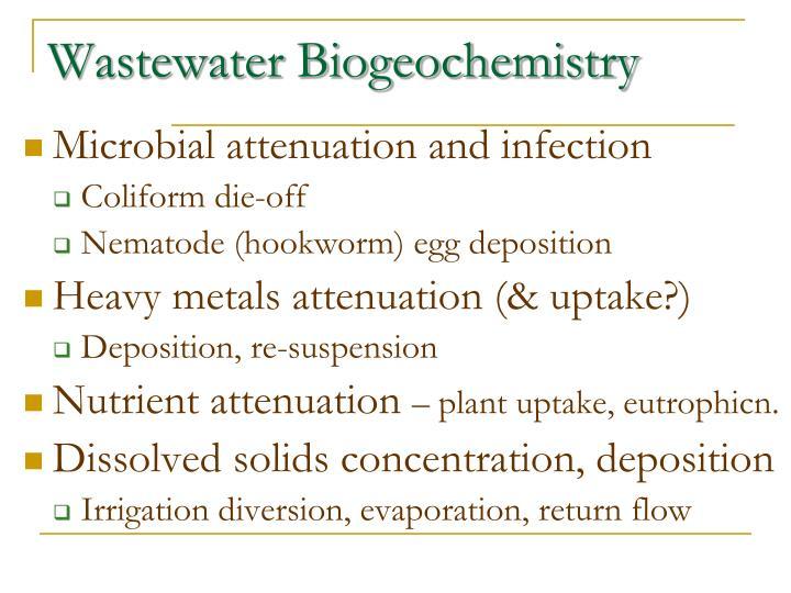 Wastewater Biogeochemistry