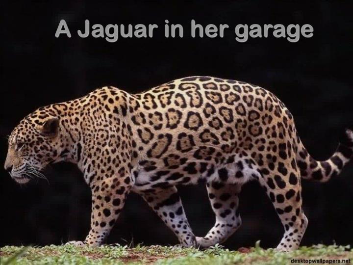 A Jaguar in her garage
