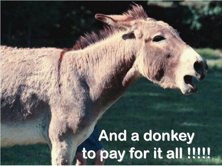 And a donkey                 to pay for it all !!!!!