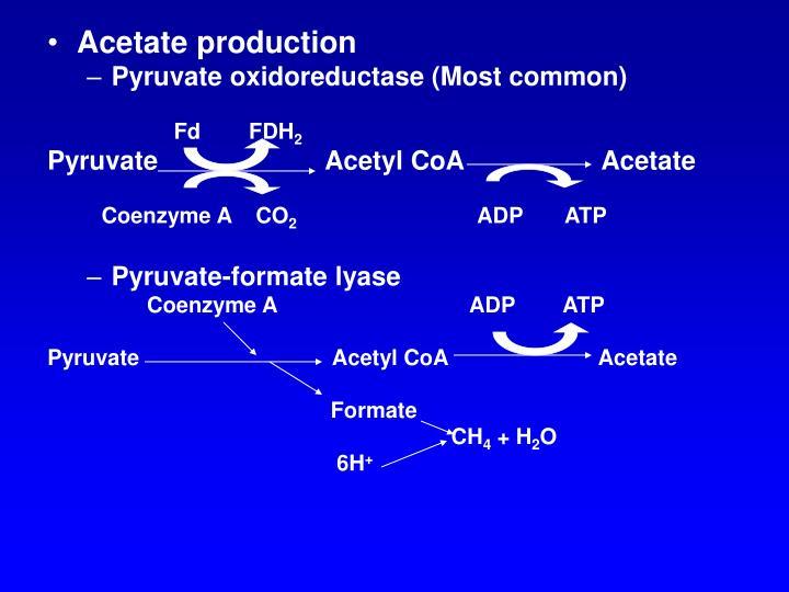 Acetate production