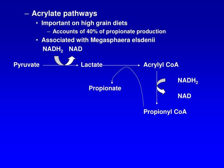 Acrylate pathways