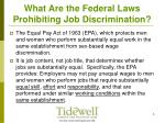 what are the federal laws prohibiting job discrimination4