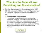what are the federal laws prohibiting job discrimination6