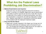 what are the federal laws prohibiting job discrimination9