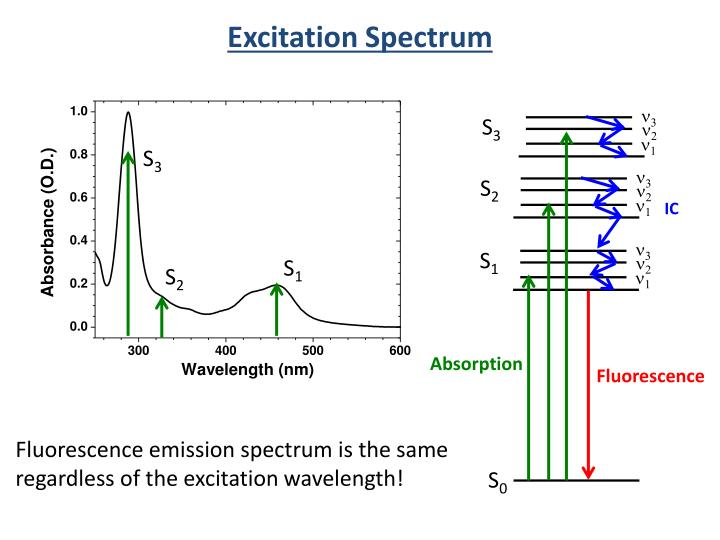 Excitation Spectrum