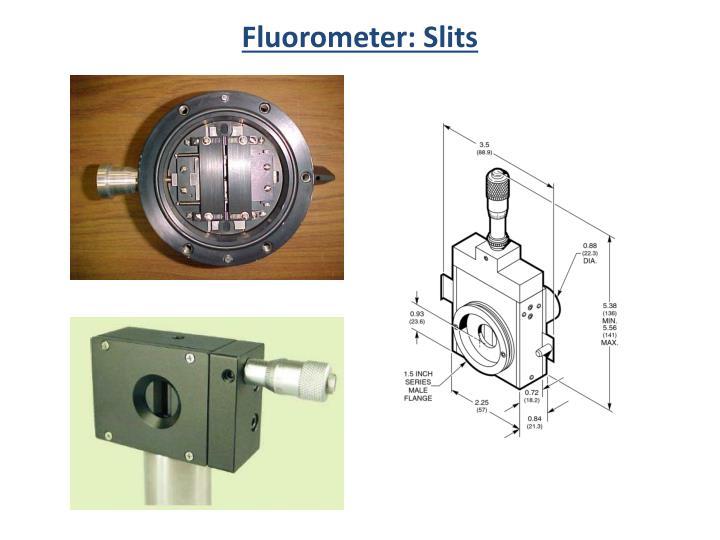 Fluorometer