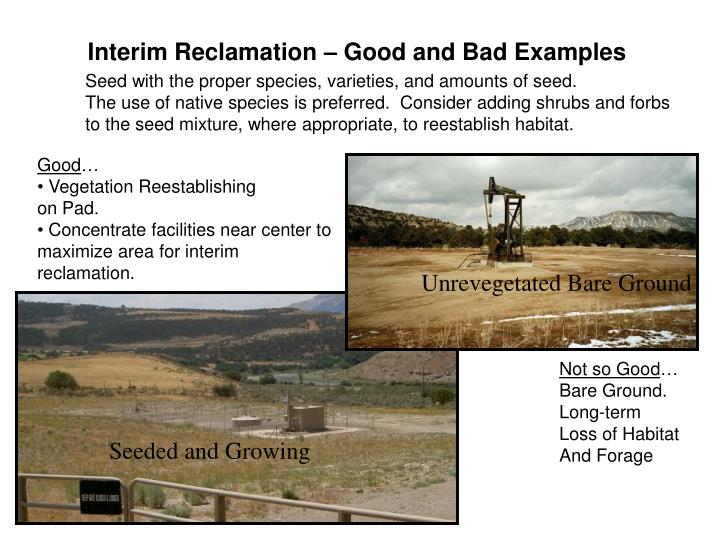 Interim Reclamation – Good and Bad Examples