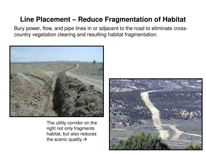 Line Placement – Reduce Fragmentation of Habitat