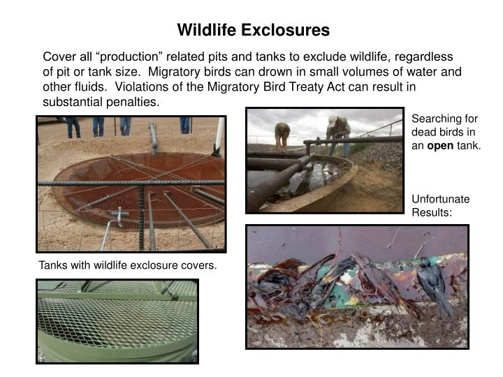 Wildlife Exclosures