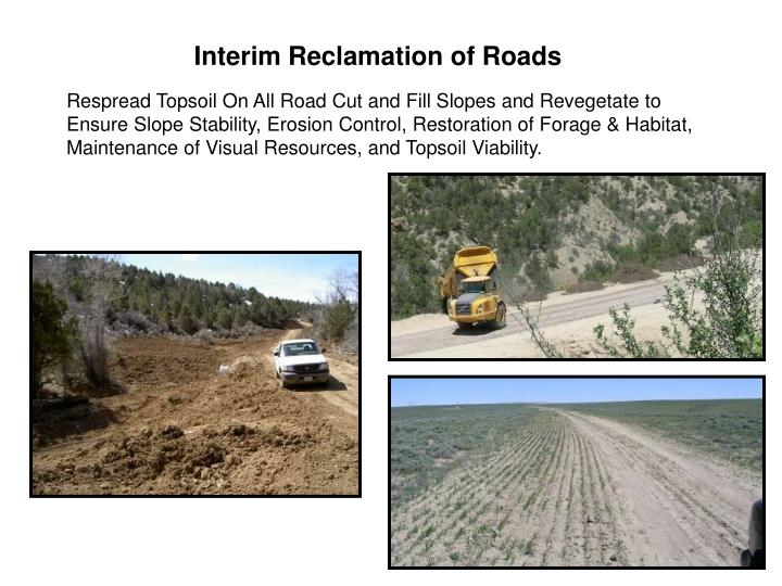 Interim Reclamation of Roads