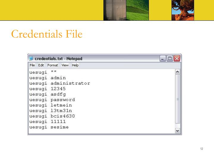 Credentials File