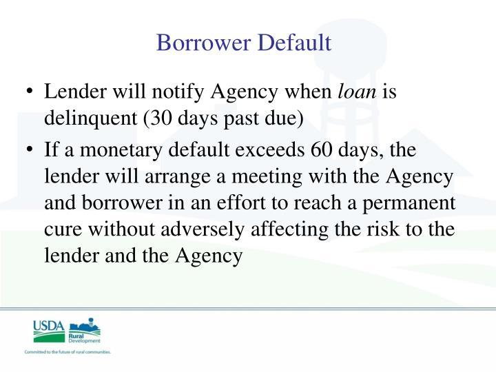 Borrower Default
