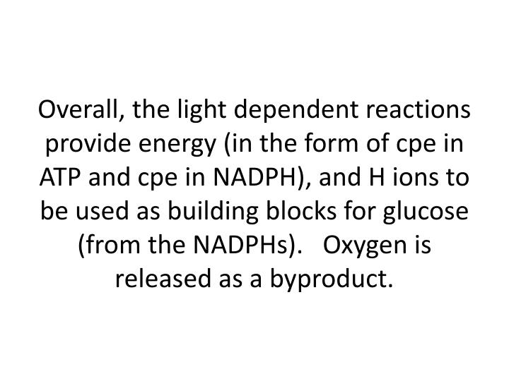 Overall, the light dependent reactions provide energy (in the form of cpe in  ATP and cpe in NADPH), and H ions to be used as building blocks for glucose (from the NADPHs).   Oxygen is released as a byproduct.