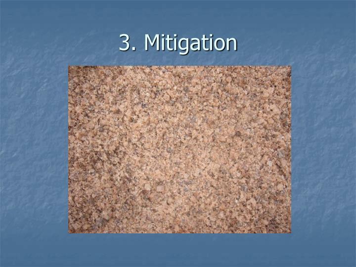 3. Mitigation
