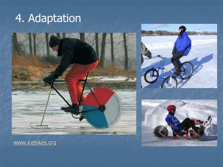 4. Adaptation