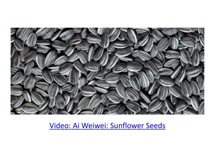 Video: Ai Weiwei: Sunflower Seeds