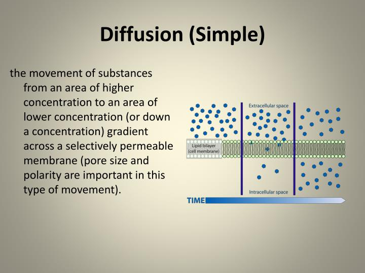 Diffusion (Simple)