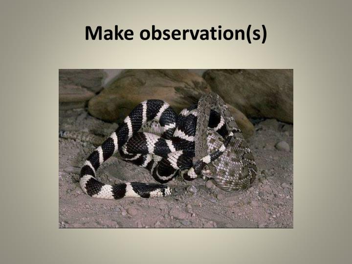 Make observation(s)