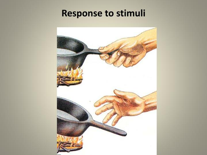 Response to stimuli