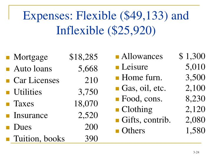 Expenses: Flexible ($49,133) and Inflexible ($25,920)