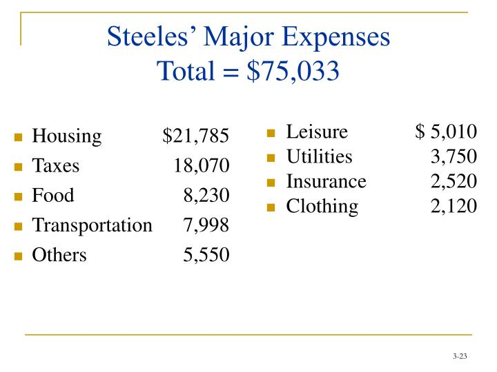 Steeles' Major Expenses